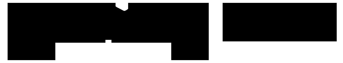 Logo wording